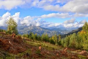 Azur Mercantour Nature - Ecotourisme dans la Vallée Verte