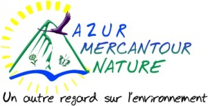 logo AMEN projet2 V10